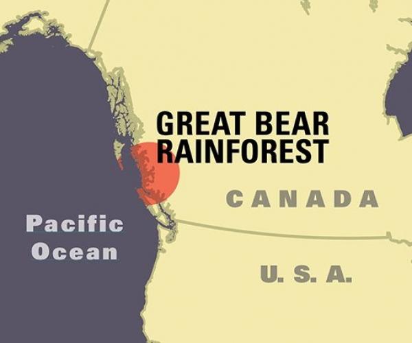 bear_gbrfilmsite_map_2